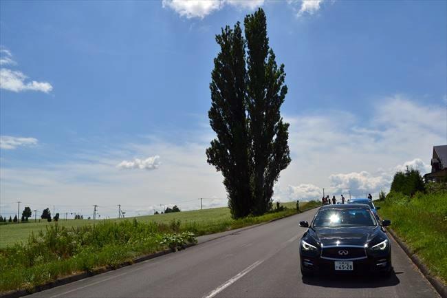 V37スカイラインとケンとメリーの木