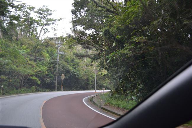 山道・峠道